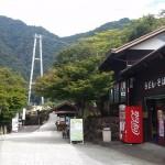 綾の照葉樹林とは?吊り橋と紅葉の見ごろはいつ?
