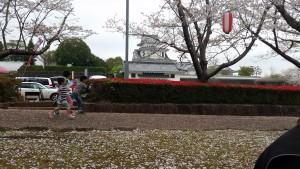 天ヶ城公園2