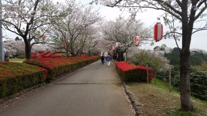天ヶ城公園1